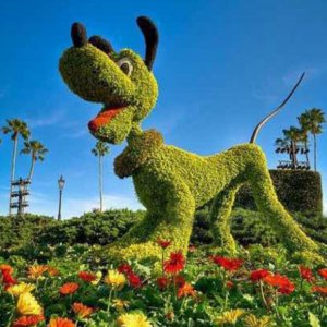 Outdoor Fake Plants Sculpture  Dogs From China