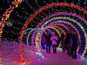 All Kinds Of Christmas Light Tunnels, Light Arch, Street Lighting Decorations On Christmas